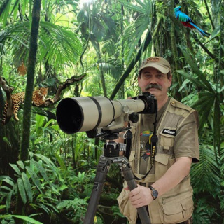 photographer in rainforest